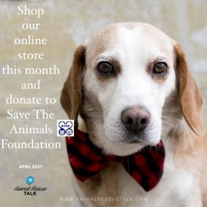 Animal Rescue Talk