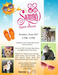 STAF Summer Open House flyer